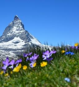 Piszą o nas: Grand Tour of Switzerland