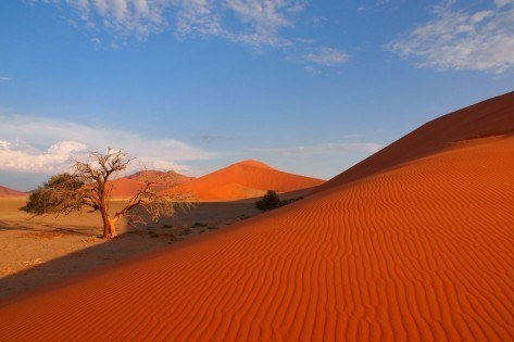 NAMIBIA - BARWNY PULS ŻYCIA